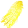 "Ostrich Wing Feathers 18-24"" Premium Quality 1/2 Lb Yellow"